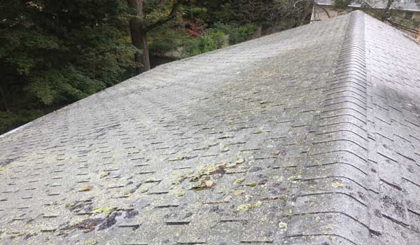 Roofing Lexington Ma Dependable Quality Roofers