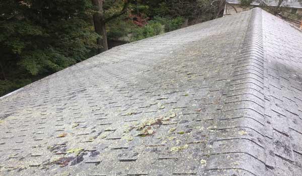 Roofing companies Lexington MA
